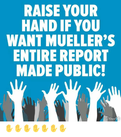 Public, You, and Made: RAISE YOUR  HAND IF YOU  WANT MUELLER'  ENTIRE REPORT  MADE PUBLIC  er ✋✋✋✋✋✋✋