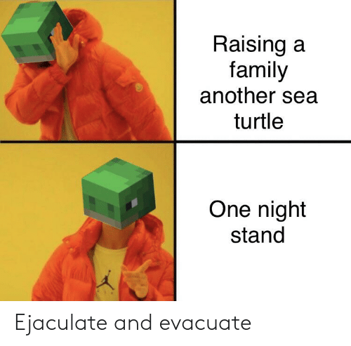 Family, Turtle, and Another: Raising a  family  another sea  turtle  One night  stand Ejaculate and evacuate