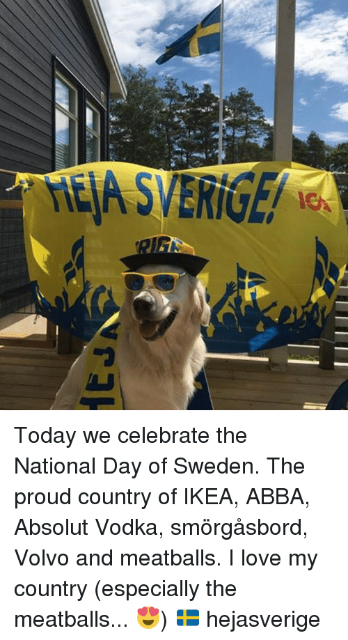 ral today we celebrate the national day of sweden the 22977335 ✅ 25 best memes about absolut vodka absolut vodka memes,Absolut Vodka Meme