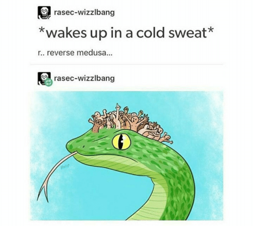 rasec-wizzlbang-wakes-up-in-a-cold-sweat-r-reverse-medusa-35651583.png