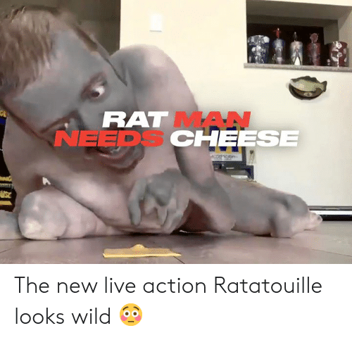Dank, Ratatouille, and Live: RAT MAN  NEEDS CHEESE The new live action Ratatouille looks wild 😳