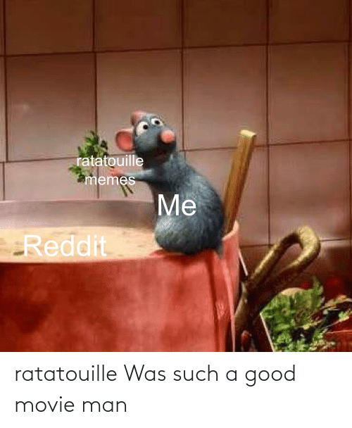 Ratatouille Was Such A Good Movie Man Ratatouille Meme On Me Me