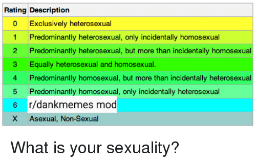 Predominantly heterosexual only incidentally homosexual