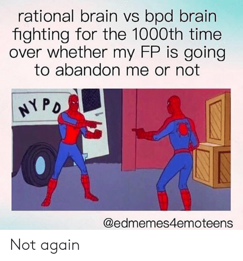 Rational Brain vs Bpd Brain Fighting for the 1000th Time Over
