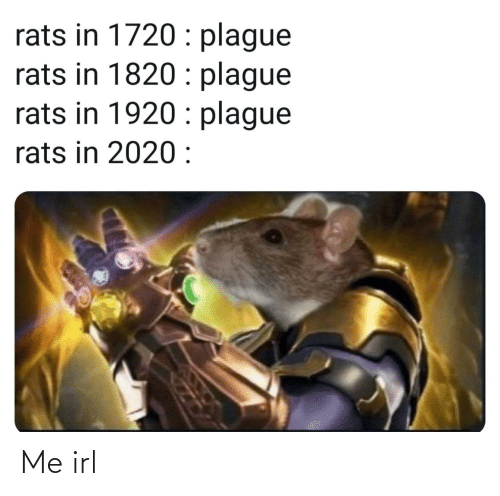 Irl, Me IRL, and Plague: rats in 1720 : plague  rats in 1820 : plague  rats in 1920 : plague  rats in 2020 : Me irl
