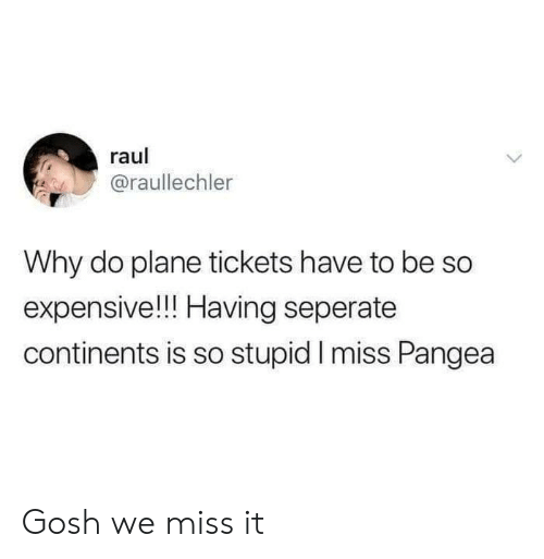 Plane Tickets, Pangea, and Raul: raul  @raullechler  Why do plane tickets have to be So  expensive!!! Having seperate  continents is so stupid I miss Pangea Gosh we miss it