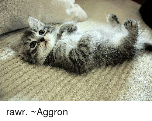 25+ Best Memes About Aggron | Aggron Memes