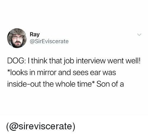Inside Out, Job Interview, and Mirror: Ray  @SirEviscerate  DOG: I think that job interview went well!  looks in mirror and sees ear was  inside-out the whole time* Son ofa (@sireviscerate)