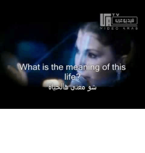 rdec arab what is the meaning of this life شو معش هأحياة habibi