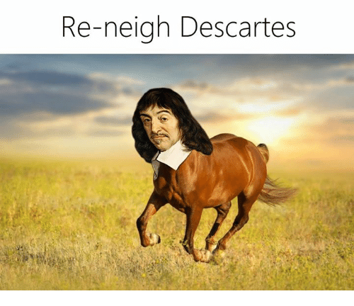 Classical Art, Neigh, and Neighed: Re-neigh Descartes