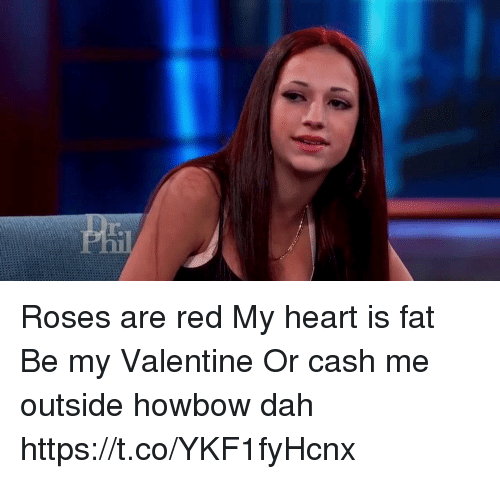 Funny, Heart, and Fat: re Roses are red My heart is fat Be my Valentine Or cash me outside howbow dah   https://t.co/YKF1fyHcnx