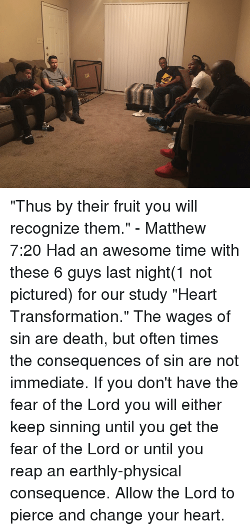 Re Thus by Their Fruit You Will Recognize Them - Matthew 720