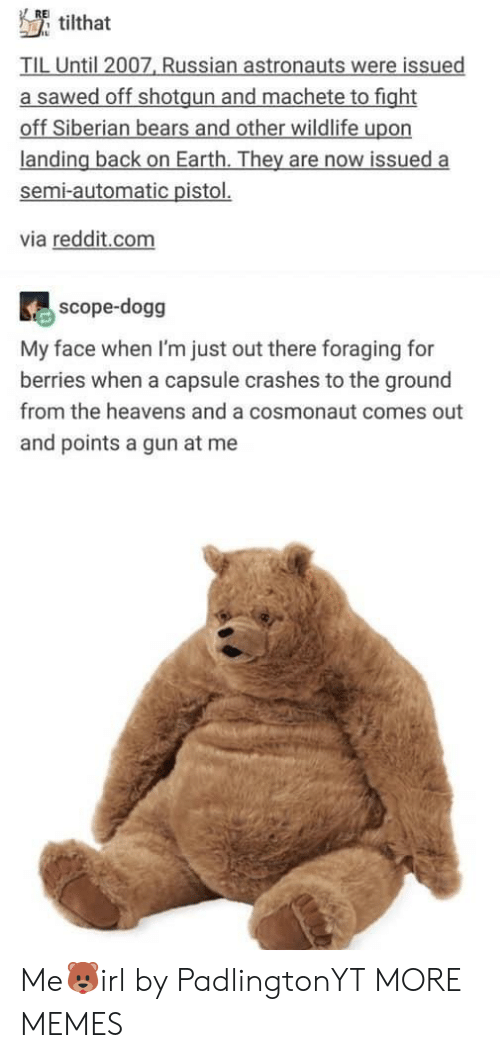 Dank, Memes, and Reddit: RE  tilthat  TIL Until 2007, Russian astronauts were issued  a sawed off shotgun and machete to fight  off Siberian bears and other wildlife upon  landing back on Earth. They are now issued a  semi-automatic pistol.  via reddit.com  scope-dogg  My face when I'm just out there foraging for  berries when a capsule crashes to the ground  from the heavens and a cosmonaut comes out  and points a gun at me Me🐻irl by PadlingtonYT MORE MEMES