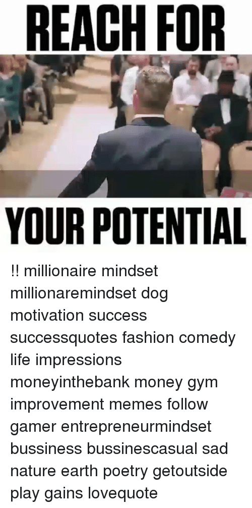 Fashion, Gym, and Life: REACH FOR  YOUR POTENTIAL !! millionaire mindset millionaremindset dog motivation success successquotes fashion comedy life impressions moneyinthebank money gym improvement memes follow gamer entrepreneurmindset bussiness bussinescasual sad nature earth poetry getoutside play gains lovequote