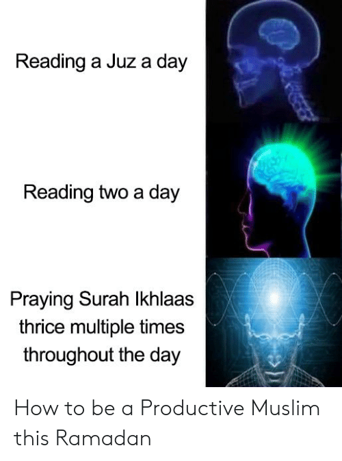 Muslim, How To, and Ramadan: Reading a Juz a day  Reading two a day  Praying Surah Ikhlaas  thrice multiple times  throughout the day How to be a Productive Muslim this Ramadan