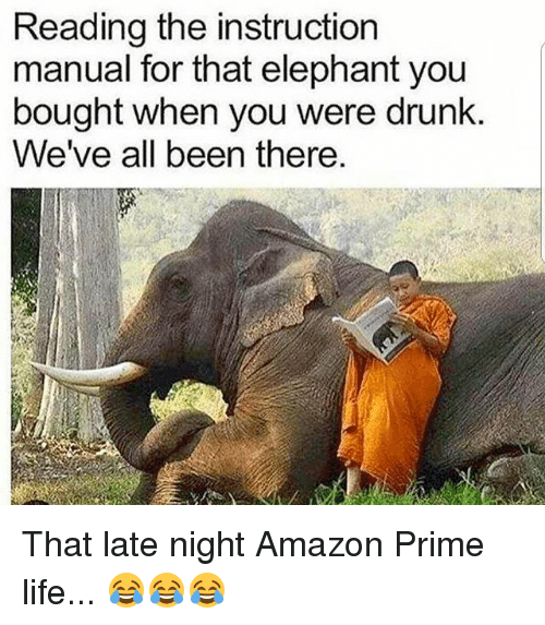 Amazon, Amazon Prime, and Drunk: Reading the instruction  manual for that elephant you  bought when you were drunk.  We've all been there That late night Amazon Prime life... 😂😂😂