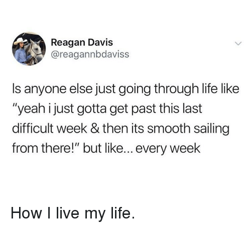 """Life, Memes, and Smooth: Reagan Davis  @reagannbdaviss  Is anyone else just going through life like  """"yeah i just gotta get past this last  difficult week & then its smooth sailing  from there!"""" but like... every week How I live my life."""