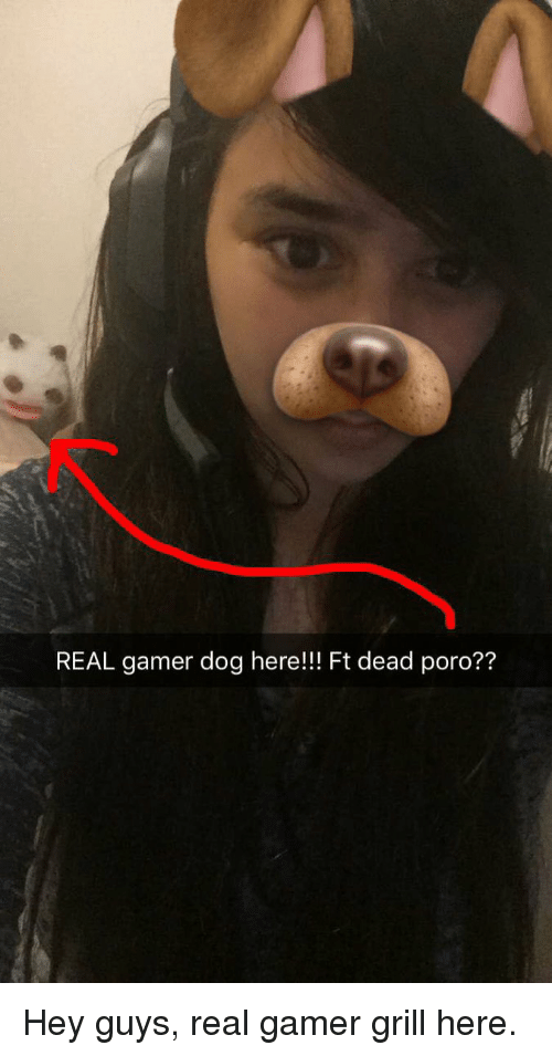 real amer dog here ft dead poro hey guys real gamer grill here