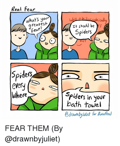 Memes, Spiders, and Fear: Real Fear  our  reatest  ear?  Tt should be ts  Spiders  caly  Spidect  ever  Where  piders in your  bath towel FEAR THEM (By @drawnbyjuliet)