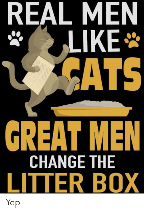 Cats, Memes, and Change: REAL MEN  LIKE  CATS  GREAT MEN  CHANGE THE  LITTER BOX Yep