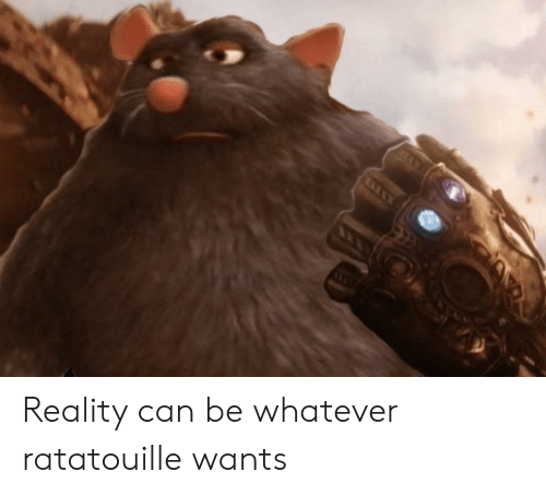 Reality Can Be Whatever Ratatouille Wants Reddit Meme On Me Me