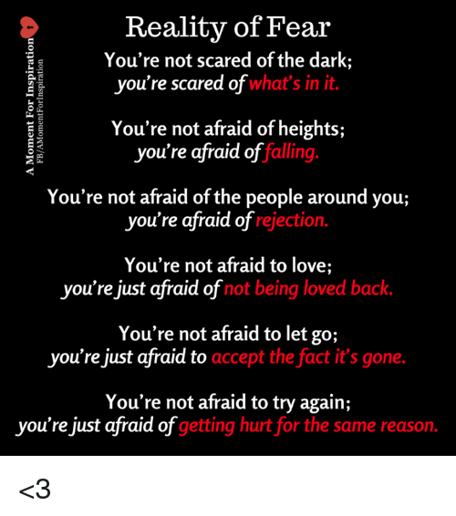 reality of fear youre not scared of the dark youre 27289673 ✅ 25 best memes about reality of fear reality of fear memes