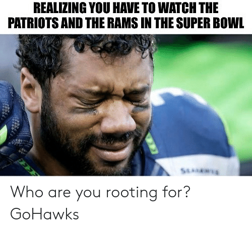 Patriotic, Seattle Seahawks, and Super Bowl: REALIZING YOU HAVE TO WATCH THE  PATRIOTS AND THE RAMS IN THE SUPER BOWL Who are you rooting for? GoHawks