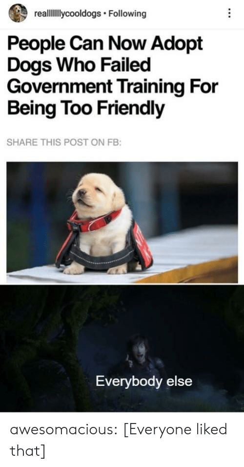 Dogs, Tumblr, and Blog: reallllycooldogs Following  People Can Now Adopt  Dogs Who Failed  Government Training For  Being Too Friendly  SHARE THIS POST ON FB:  Everybody else awesomacious:  [Everyone liked that]
