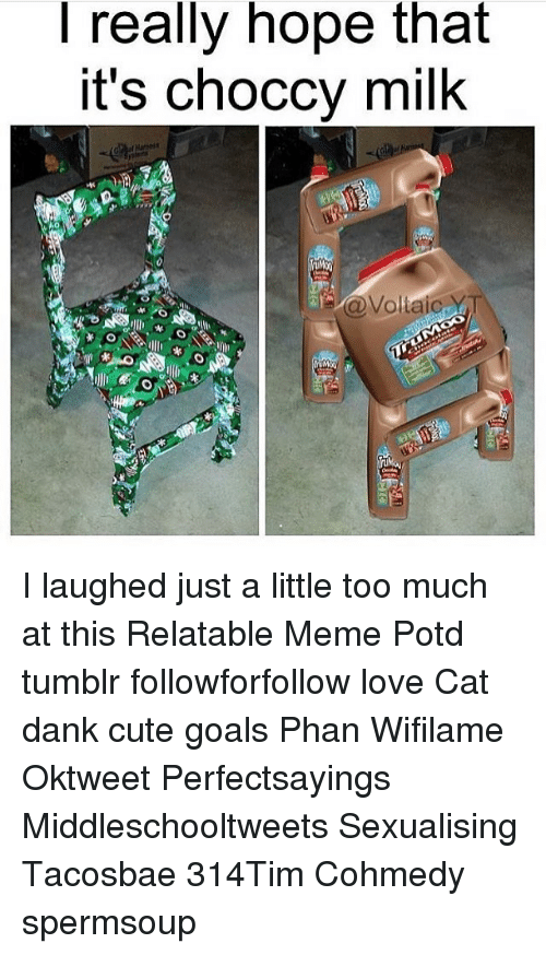 Dank, Memes, and Too Much: really hope that  It's choccy milk  @Voltaic YT I laughed just a little too much at this Relatable Meme Potd tumblr followforfollow love Cat dank cute goals Phan Wifilame Oktweet Perfectsayings Middleschooltweets Sexualising Tacosbae 314Tim Cohmedy spermsoup