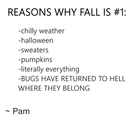 [Image: reasons-why-fall-is-1-chilly-weather-hal...847733.png]