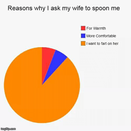 Comfortable, Wife, and Ask: Reasons why I ask my wife to spoon me  For Warmth  More Comfortable  I want to fart on her