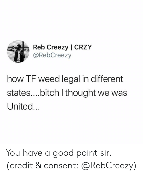 Bitch, Weed, and Good: Reb Creezy   CRZY  @RebCreezy  how TF weed legal in different  states....bitch I thought we was  United... You have a good point sir. (credit & consent: @RebCreezy)