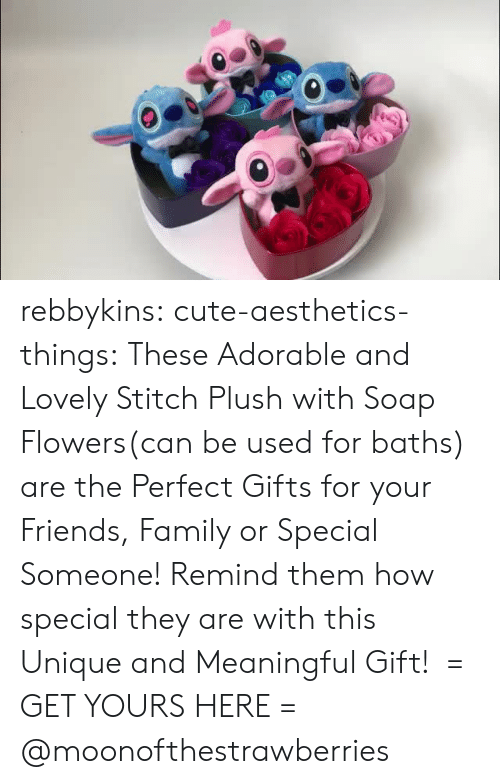 Cute, Family, and Friends: rebbykins:  cute-aesthetics-things: These Adorable and Lovely Stitch Plush with Soap Flowers(can be used for baths) are the Perfect Gifts for your Friends, Family or Special Someone! Remind them how special they are with this Unique and Meaningful Gift!  = GET YOURS HERE =  @moonofthestrawberries