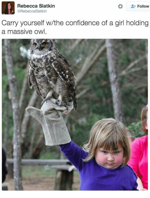Memes, 🤖, and Owl: Rebecca Slatkin  Follow  CORebeccaslatkin  Carry yourself w/the confidence of a girl holding  a massive owl