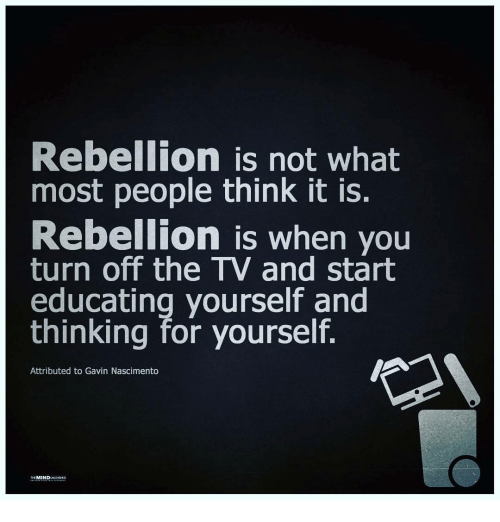 Memes Rebellion And  F F A  Rebellion Is Not What Most People Think It Is