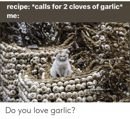 Love, Memes, and 🤖: recipe: *calls for 2 cloves of garlic*  me:  AFP  PONALDO SCHEMIOT/AFP Do you love garlic?