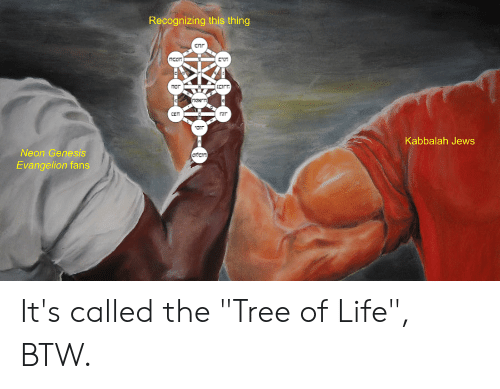 Recognizing This Thing C Ur Kabbalah Jews Neon Genesis Evangelion Fans It S Called The Tree Of Life Btw Life Meme On Me Me The tree of sephiroth (tree of life) is mentioned, as well as shown in the opening title sequence and in gendo's office, with hebrew inscriptions on it (the terms written there are mostly kabbalic). recognizing this thing c ur kabbalah