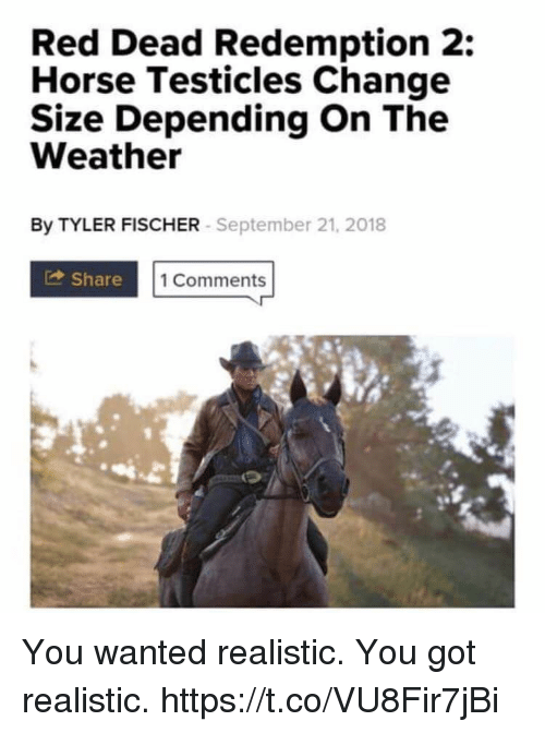 red-dead-redemption-2-horse-testicles-ch