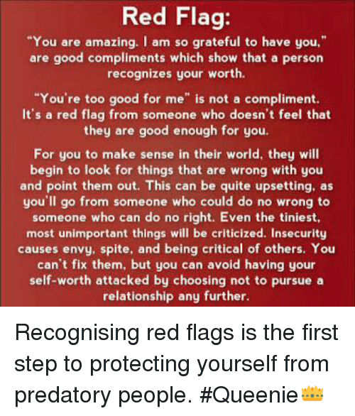 Red Flag You Are Amazing I Am So Grateful to Have You Are