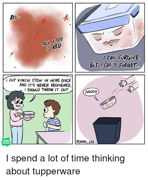 Memes, Time, and Tupperware: RED  S RED  CAN FORGIVE  BUT I CAN'T FORGET  I PUT KIMCHI STEW IN HERE ONCE  AND IT'S NEVER RECOVERED,  I SHOULD THROW IT OUT  WEB  TOON  @DAMI LEE I spend a lot of time thinking about tupperware