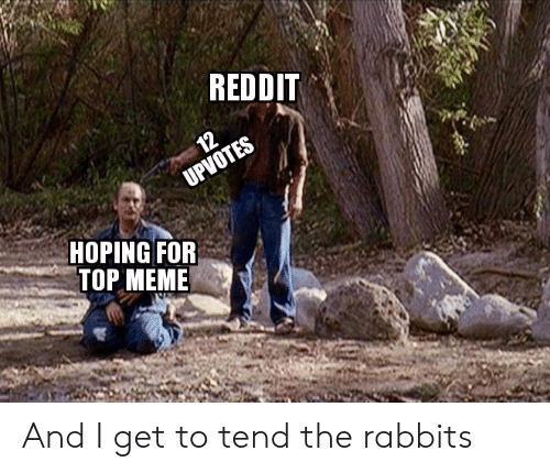 REDDIT 12 UPVOTES HOPING FOR TOP MEME and I Get to Tend the