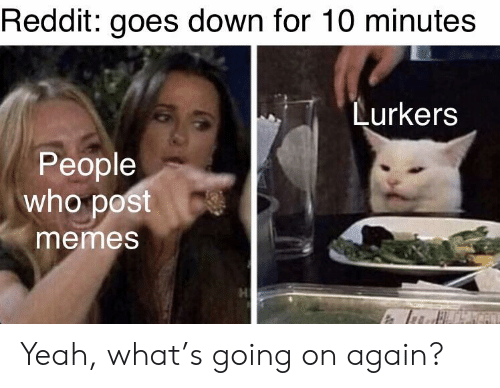 🔥 25+ Best Memes About Lurkers | Lurkers Memes