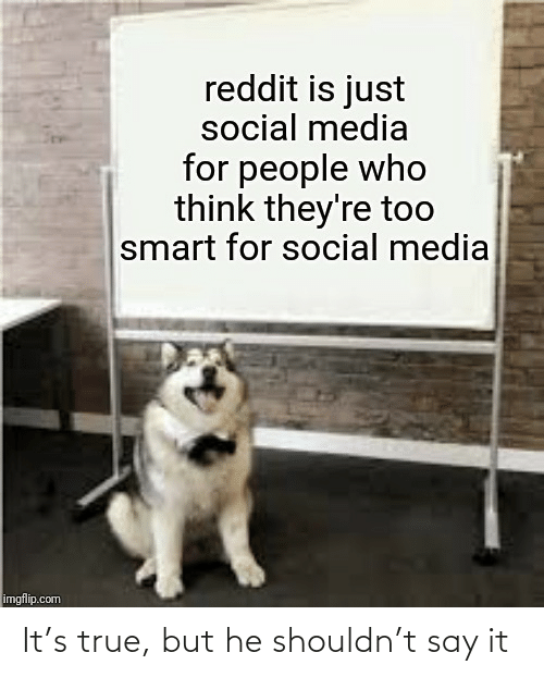 Reddit, Social Media, and True: reddit is just  social media  for people who  think they're too  smart for social media  imgflip.com It's true, but he shouldn't say it
