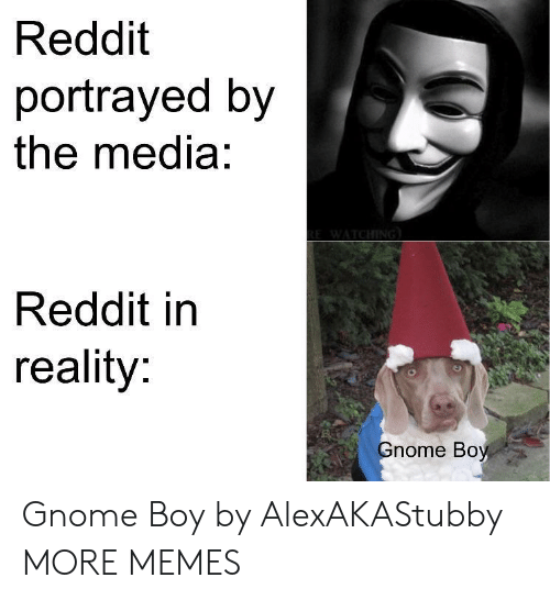 Dank, Memes, and Reddit: Reddit  portrayed by  the media:  Reddit in  reality:  nome Boy Gnome Boy by AlexAKAStubby MORE MEMES
