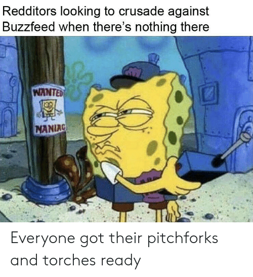 Redditors Looking to Crusade Against Buzzfeed When There 'S