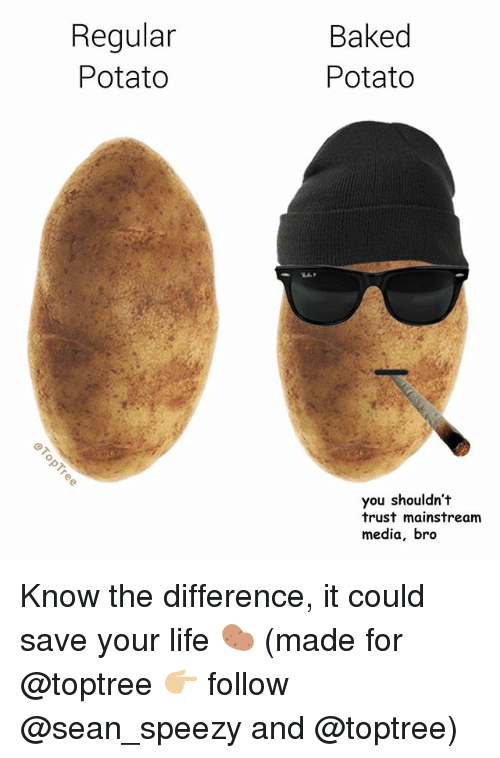 Baked, Life, and Memes: Regular  Potato  Baked  Potato  0  you shouldn't  trust mainstream  media, bro Know the difference, it could save your life 🥔 (made for @toptree 👉🏼 follow @sean_speezy and @toptree)