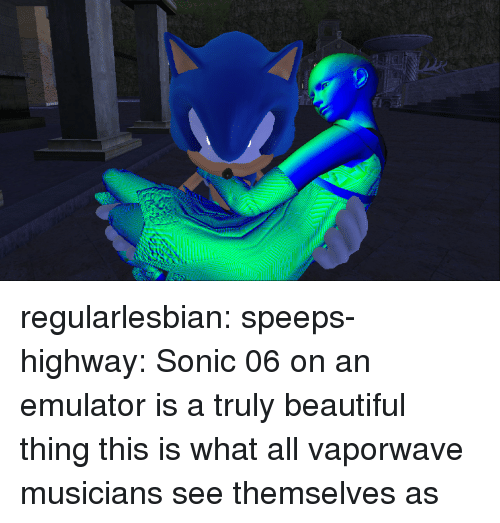 Beautiful, Tumblr, and Blog: regularlesbian:  speeps-highway: Sonic 06 on an emulator is a truly beautiful thing this is what all vaporwave musicians see themselves as
