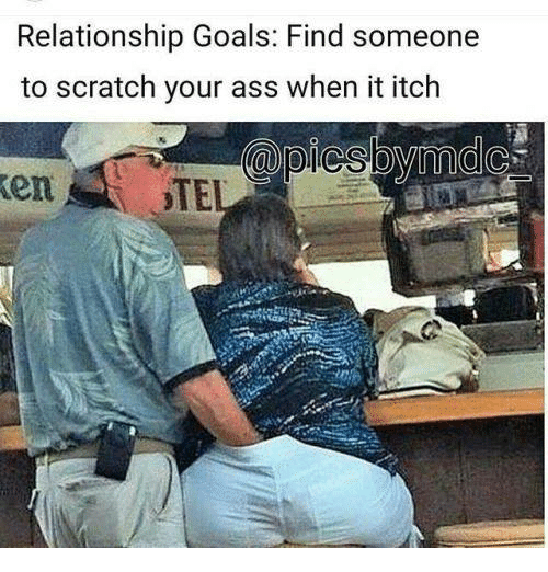 Ass, Goals, and Memes: Relationship Goals: Find someone  to scratch your ass when it itch