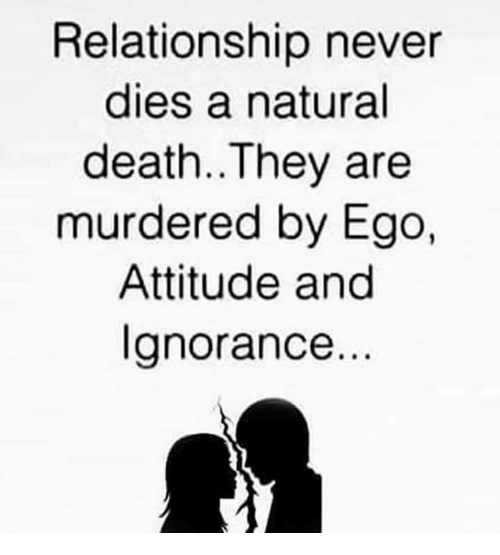 Memes, Death, and Attitude: Relationship never  dies a natural  death.. They are  murdered by Ego,  Attitude and  Ignorance