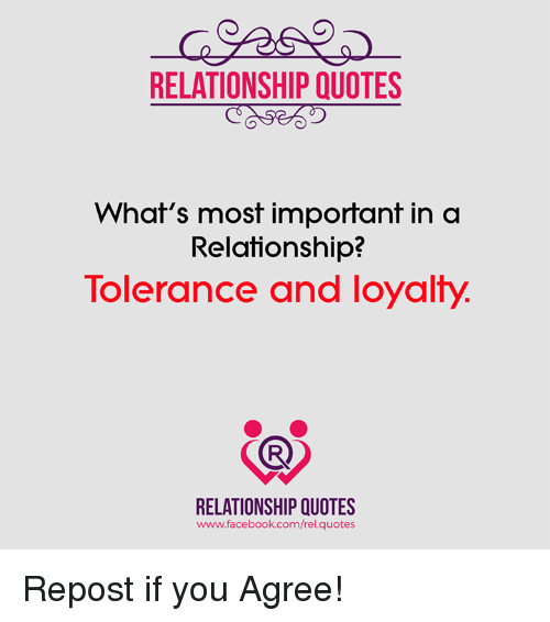 Relationship Quotes Whats Most Important In A Relationship